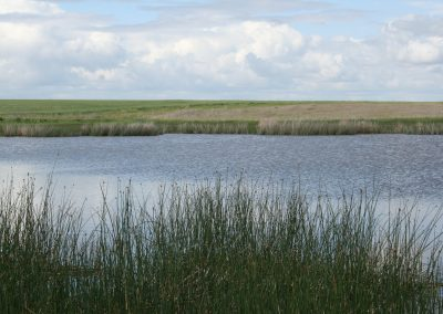 habitat adri